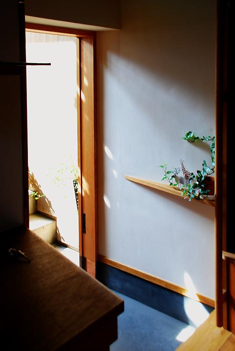 木の玄関引戸を全開