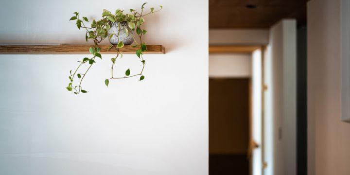 漆喰の壁に棚