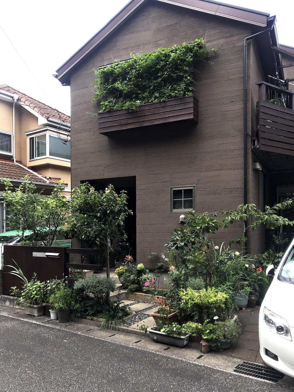 緑のカーテンが映える外観の家